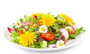 les fleurs comestibles en cuisine cuisiner avec des fleurs brusselslife