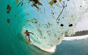 spring 2017 ocean plastic pollution shorelines member magazine
