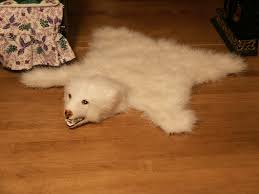 Polar Bear Fur Rug Appealing Grizzly Bear Rugs For With Large Image Then Teddy Bear