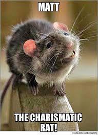 Rat Meme - matt the charismatic rat make a meme