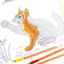 free cat coloring arty crafty kids