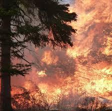 Canadian Wildland Fire Training by Canada Wildfire