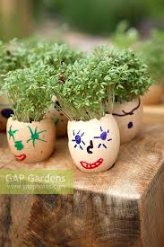 decorated egg shells gap gardens dorset cereals edible playground at rhs hton