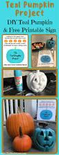 best 25 teal pumpkin ideas on pinterest teal pumpkin project