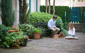 a dog friendly travel guide to visiting charleston travel leisure