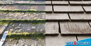 Moss Cleaner For Patios Ask Wet U0026 Forget How Wet U0026 Forget Outdoor Annihilates Stains On