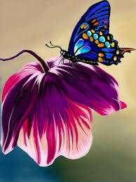 amazingly beautiful butterflies flowers butterflies