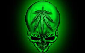 imagenes perronas mota imágenes de marihuanas chidas para jóvenes rebeldes