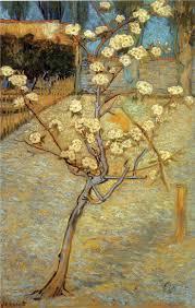 254 best vincent van gogh images on pinterest paintings art van vincent van gogh pear tree in blossom 1888