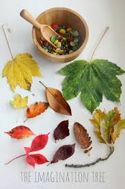 autumn leaves and gems colour sorting activity the imagination tree