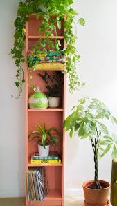 Inside Home Plants by 229 Best Entryway And Hallway Plants Images On Pinterest