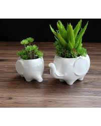 Ceramic Garden Decor On Sale Now 47 Off Elephant Cute Creative Pots Garden Decor