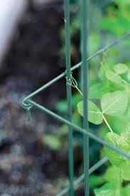 pea trellis tall and expandable steel trellis gardener u0027s supply
