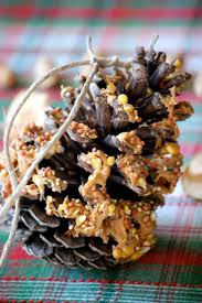 11 best edible christmas tree decorations images on pinterest