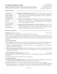 Sample Resume For Finance Executive by Cover Letter Resume Format For Finance Manager Sample Resume For