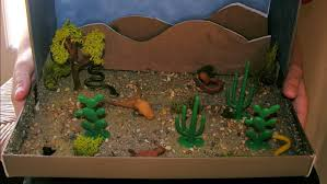 what is a good desert habitat project for kids reference com