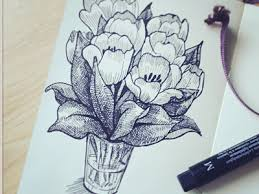 sketch of tulips by daria tokranova dribbble