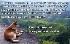 Dog Barking Meme - the power of barking darwin dogs