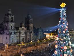 best christmas trees the best christmas trees in the world
