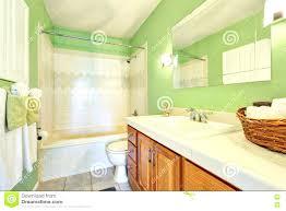 Best 25 Yellow Tile Bathrooms by Best 25 Light Green Bathrooms Ideas On Pinterest Indoor House