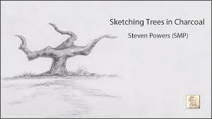 steven powers smp illustrator sketching trees in charcoal