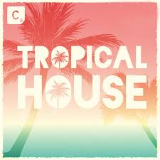 tropical photo album various artists tropical house on traxsource