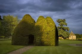Yew Topiary - yew topiary house on the large lawn or pleasaunce at the