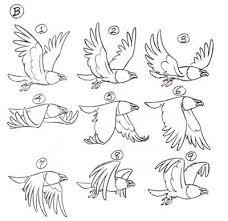 25 bird flying ideas bird wings animation