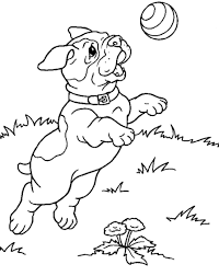dachshund coloring pages virtren com