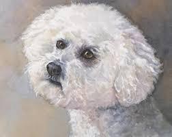poodle y bichon frise bichon painting etsy