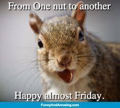 Almost Friday Meme - imagenes de humor con animales