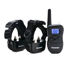 Radio Collar For Beagle Ownpets Rechargeable 2 Dog Shock Training Collar 330 Yards With