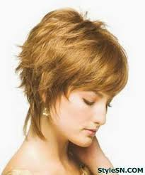 looking for the shag haircut of the70 s short hairstyles of the 70 s found on stylesn com hairstyles