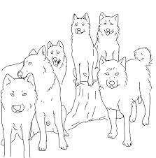 all of stk u0027s siberian huskies lineart by shady tree kennels on
