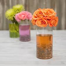 Round Glass Vase Round Glass Vase Clear Cylinder 4 X 8 Inches