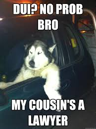 Dui Meme - dui no prob bro my cousin s a lawyer mean dog quickmeme