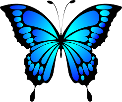 22 butterfly clipart
