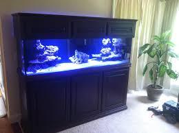 coastal aquarium design facebook