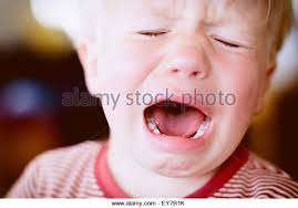 infant stock photos infant stock images alamy