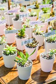plant wedding favors 19 wedding favors that won t end up in the trash huffpost