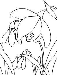 printable spring flowers free coloring pages spring coloring spring flowers print printable