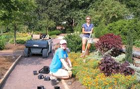 Botanical Garden Internship Summer Internship Duke Gardens