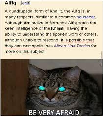 Khajiit Meme - we ve underestimated the khajiit by atesghash07 meme center