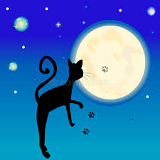 black cat in front of the moon stock illustration