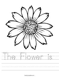 the flower is worksheet twisty noodle
