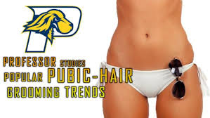 no pubic hair university conducted study to find out most popular pubic hair
