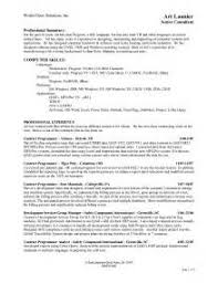 Professional Summary On A Resume Thesis Write Abstract Resume Tips Templates How To Write About