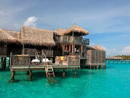 gili lankanfushi images of the world mind pinterest