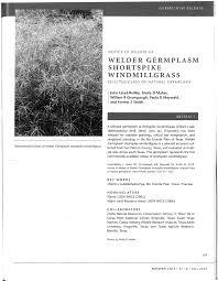 usda native plants notice of release of welder germplasm shortspike windmillgrass