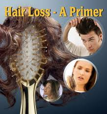 download hair loss ebook hair loss protocol pdf ebook free download regrow hair protocol